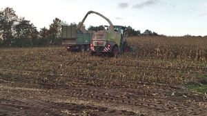 Avoid surface soil compaction - Compaction during harvesting