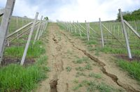 Concentrated runoff and erosion in access road in vineyard resize