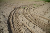 Rough seedbed